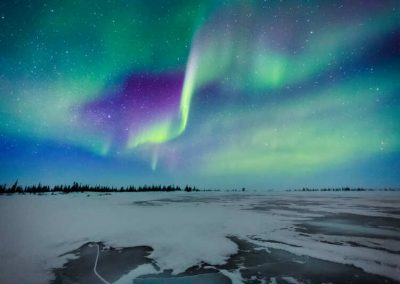 Chasing White Polar Bears & Northern Lights