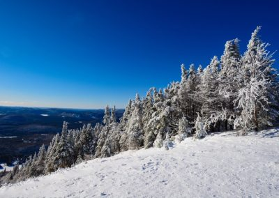 A winter dream in Quebec
