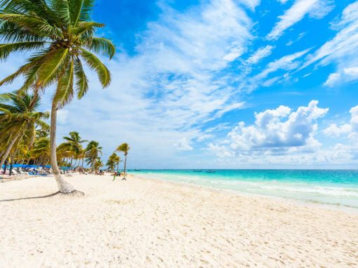 Romance & Haciendas in Yucatan