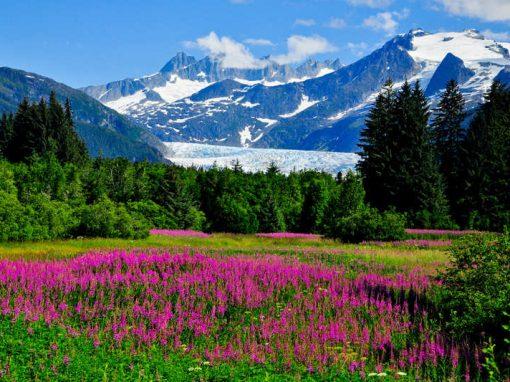Alaska Juneau 72 hours in style