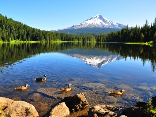 A Complete Tour of Oregon from sea to mountains