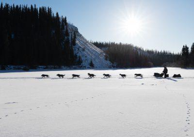 Pure Wilderness from Yukon to Alaska